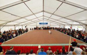 largest chocolate bar